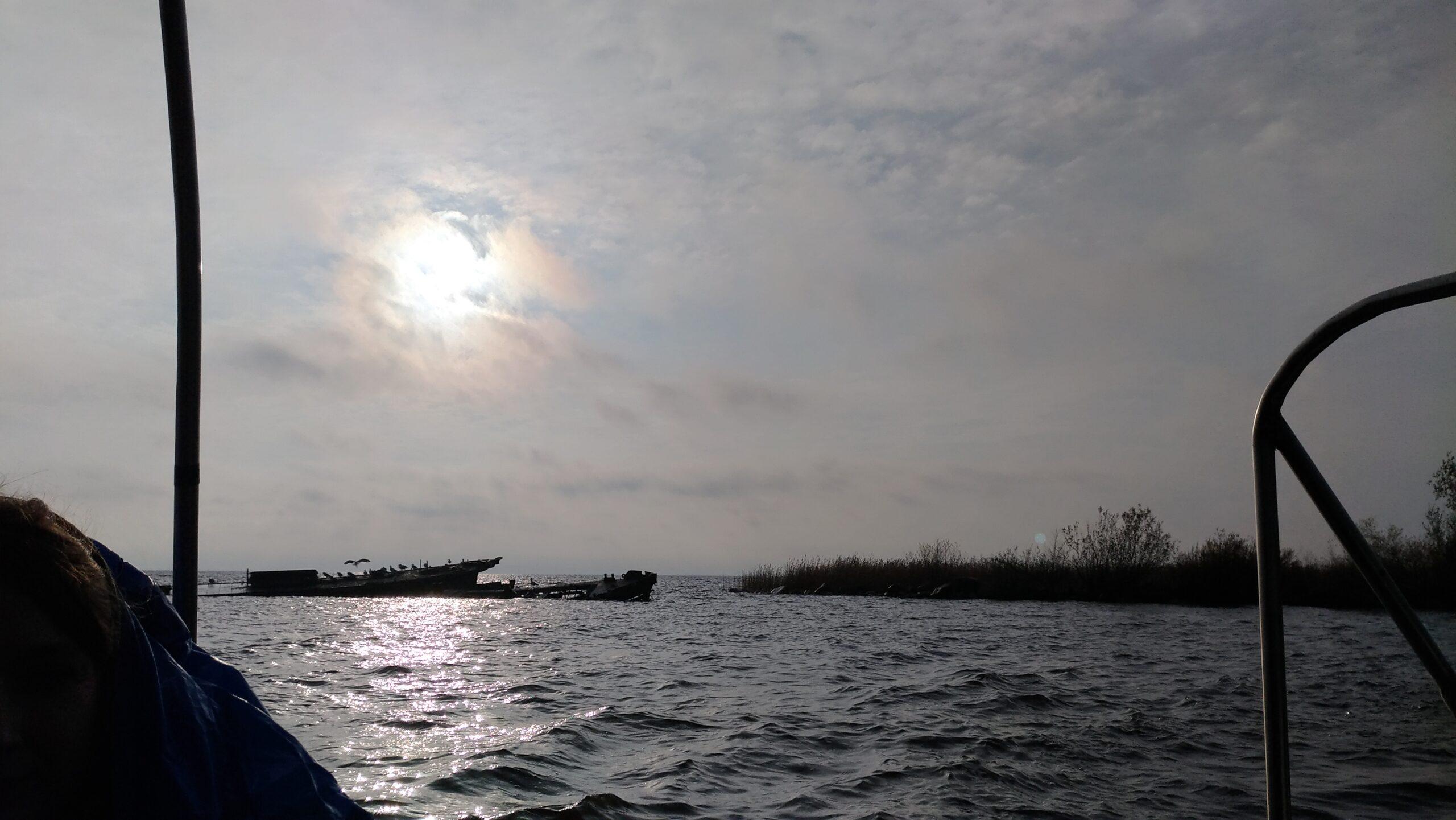 Залит остров Николай